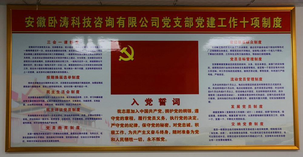 安徽卧涛党支部成立