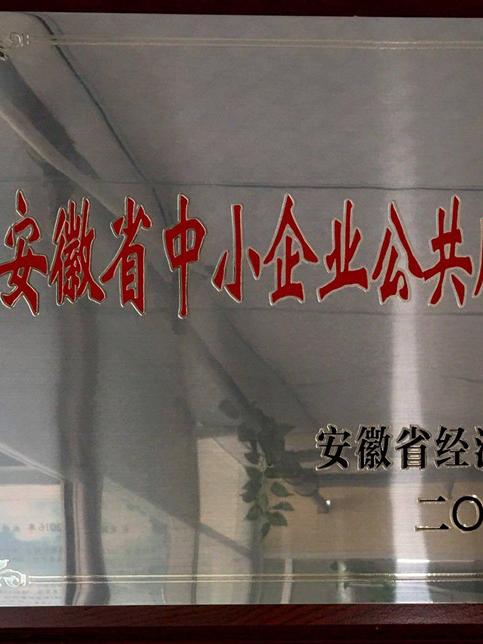 安徽卧涛荣获安徽省中小企业公共服务示范平台
