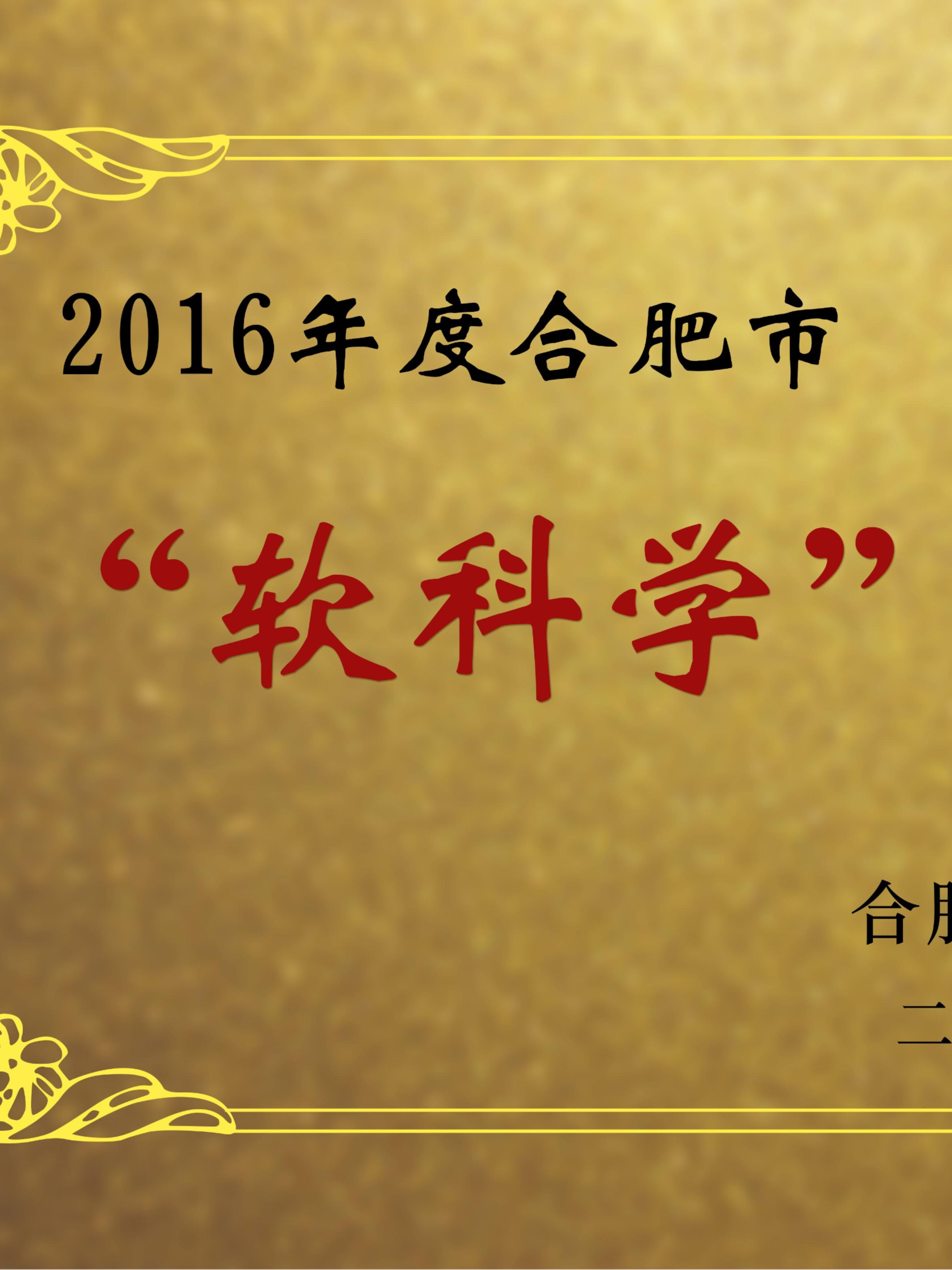 安徽卧涛2016年度合肥市软科学项目