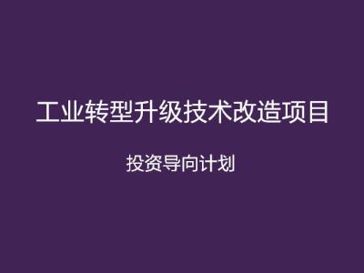 安徽省工业转型升级技术改造项目投资导向计划申报条件